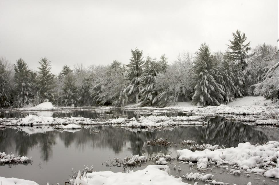 Kahshe Marsh in Winter - Missy Mandel.JPG